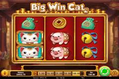 big win cat playn go