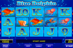 blue dolphin amatic