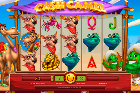 cash camel isoftbet