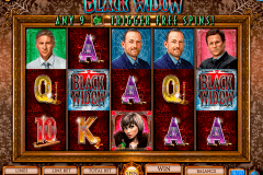black widow igt spelautomat
