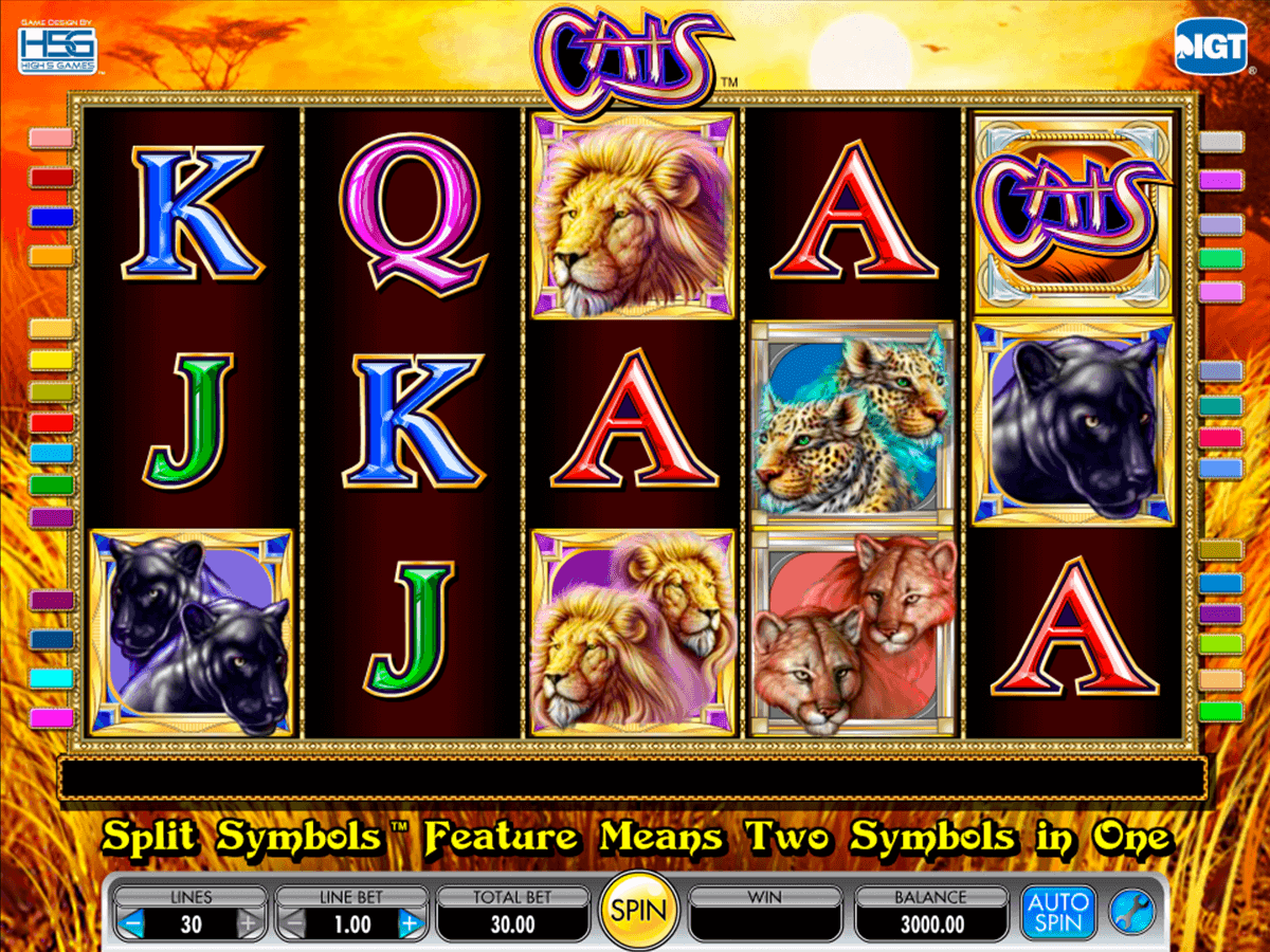 CSI™ Slot spel spela gratis i IGT Online Casinon