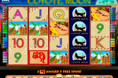 coyote moon igt spelautomat