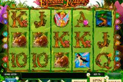 enchanted meadow playn go spelautomat