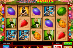 ninja fruits playn go spelautomat