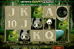 untamed giant panda microgaming spelautomat