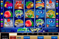 what a hoot microgaming spelautomat