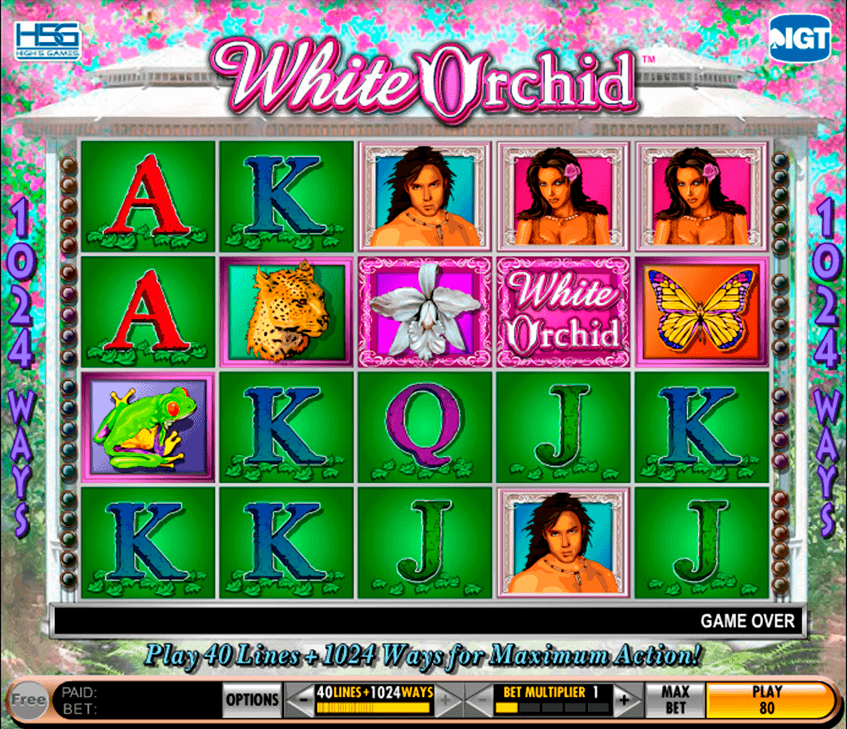 white orchid igt spelautomat