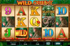 wild orient microgaming spelautomat