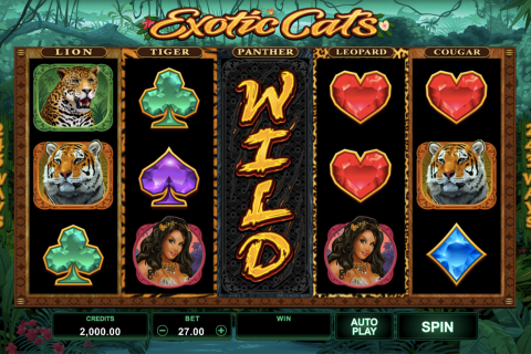 eotic cats microgaming