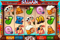 fortunate saloon multislot