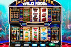 jackpot jester wild nudge netgen gaming