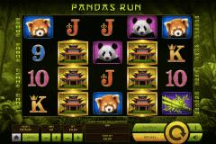 pandas run tom horn