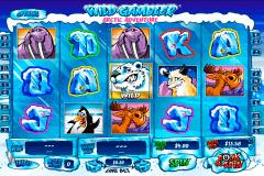 wild gambler arctic adventure playtech