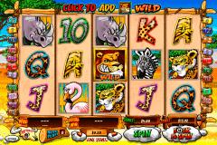 wild gambler playtech