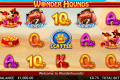wonder hounds netgen gaming
